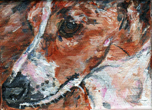 Italian Greyhound Paintings Paco