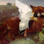 John James Audubon Paintings Fox And Goose