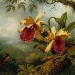 Johnson Heade Martin Orchids And Hummingbird Painting