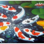 Koi Fish Origin