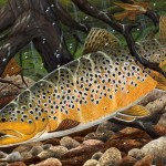 Laura Winzeler Designs Brown Trout Frame Sort