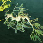 Leaf Seahorse Painting Clarence Alford Fine Art