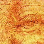 Leonardo Self Portrait Measures Centimetres