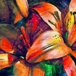 Lily Painting Flickr Sharing