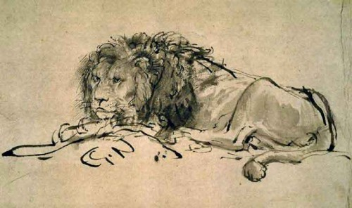 Lion Paintings Rembrandt