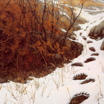 Lrs Art Medley Bev Doolittle Doubled Back Display Full Image