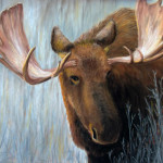 Moose Painting Dee Carpenter Alaskan Bull Fine Art Prints