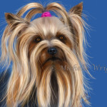 Muffin Silky Terrier Dog Portrait Painting Michelle Wrighton Fine
