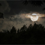 Nature Anxiety Night Moon Landscape