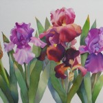 Nel Everyday Painting Large Iris Watercolor Sold