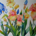 Nel Everyday Painting Summer Irises Sold