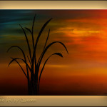 New Abstract Art Coupon Paintings