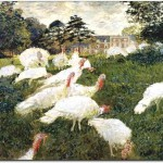Oil Painting The Turkeys Animal Cheap Paintings