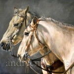 Oil Paintings Canvas China Handmade Painting Horse