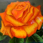 Orange Rose Painting Anysize Off