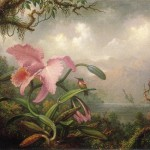 Orchid And Hummingbird Painting Martin Johnson Heade Oil