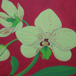 Orchid Painting Flickr Sharing