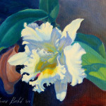 Orchid The Sunshine Painting Fine Art