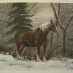Original Paintings Sarah Hinz Horse
