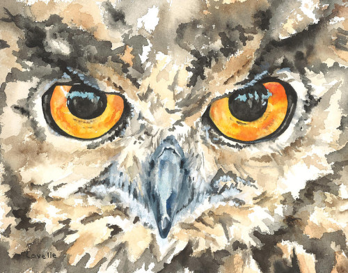 Owl Eyes Painting Kimberly Lavelle Fine Art Prints And
