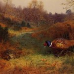 Painting Archibald Thorburn Autumn Sunshine