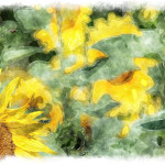 Painting Beautiful Sunflower Made Watercolor Art