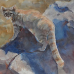 Paintings Wild Cats For Sale Watercolors Mimi Torchia Boothby