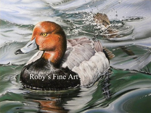Pastel Paintings Roberta Roby Baer Psa Redhead Duck Painting