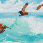 Pelican Paintings