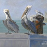 Pelican Preen Painting Lacey Wingard Fine Art