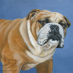 Petable Portraits Pet Paintings And Art