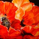 Poppies Original Oil Painting Baldwin This
