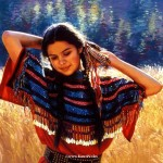 Private Collection Native American Paintings Karen Noles