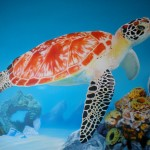 Progression Name That Painting Contest The Green Sea Turtle