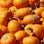 Pumpkins For Sale The Hunter Farm This Year Wedgwood Community