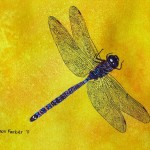 Purple Dragonfly Painting Blue And Fine Art Print