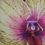 Rkw Art Abstract Orchid