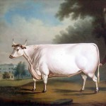 Sale This Painting The Famous Nanney Chester Animal