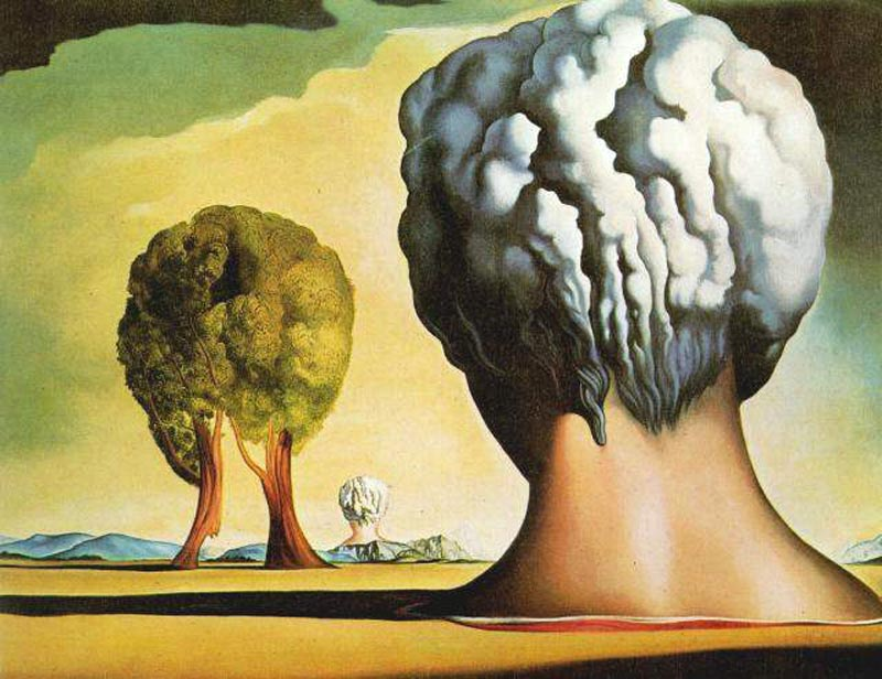 Salvador Dali Biography Painting Viuzza Art Space