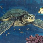Sea Turtle Painting Suzn Smith Fine Art Prints And