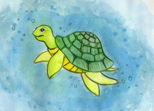 Sea Turtle Twizzy Deviantart Art