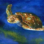 Sea Turtle Watercolor Painting Jennifer Branch