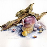 Seashell Painting Group Picture Image Tag Keywordpictures