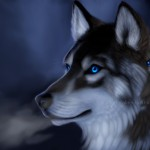 Shadow Mountain Pass Picture Realism Wolf Fantasy