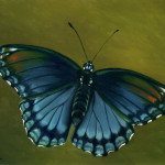 Spotted Purple Butterfly Oil Painting Faith Daily Paintings