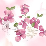 Sweet Pink Flowers Painting Pictures All Send