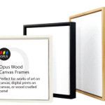 The Art Frame Opus Frames For Works Canvas