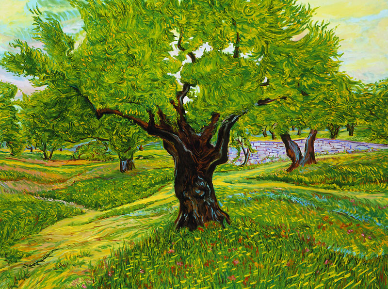 Thierry Hennequin Olive Tree Oil Canvas Painting
