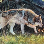 This The New Wolf Painting Have Just Completed Represents