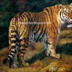 Tiger Paintings For Sale Handmade Wildlife Htp